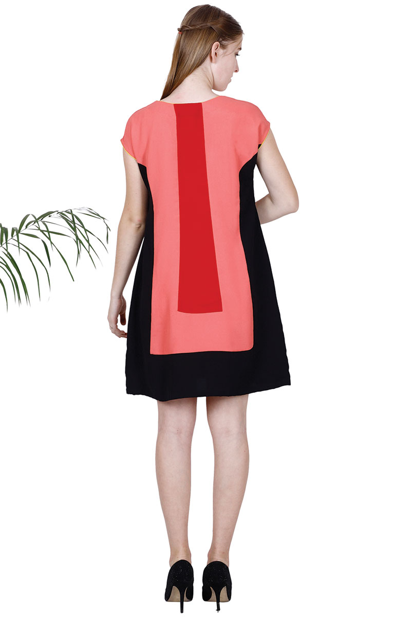 BT Pink & Black  A-Line Panelled Dress
