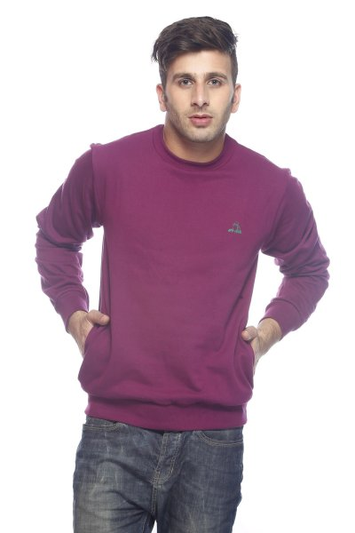 DS Solid Purple Cotton Casual Sweatshirt